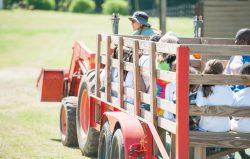 Alegre-Farm-adventure-days
