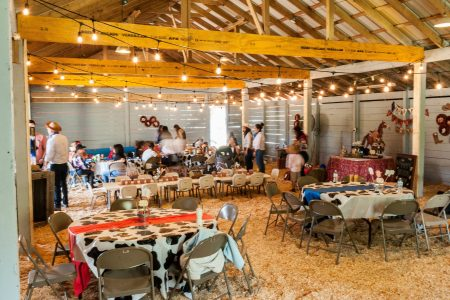 alegre-farm-themed-birthday-parties-dacula-ga-gwinnett-county