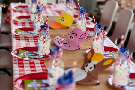 alegre-themed-farm-birthday-parties-dacula-ga-gwinnett-county