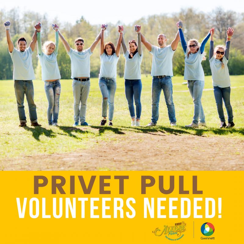 volunteers-_co-branded_logos-_final