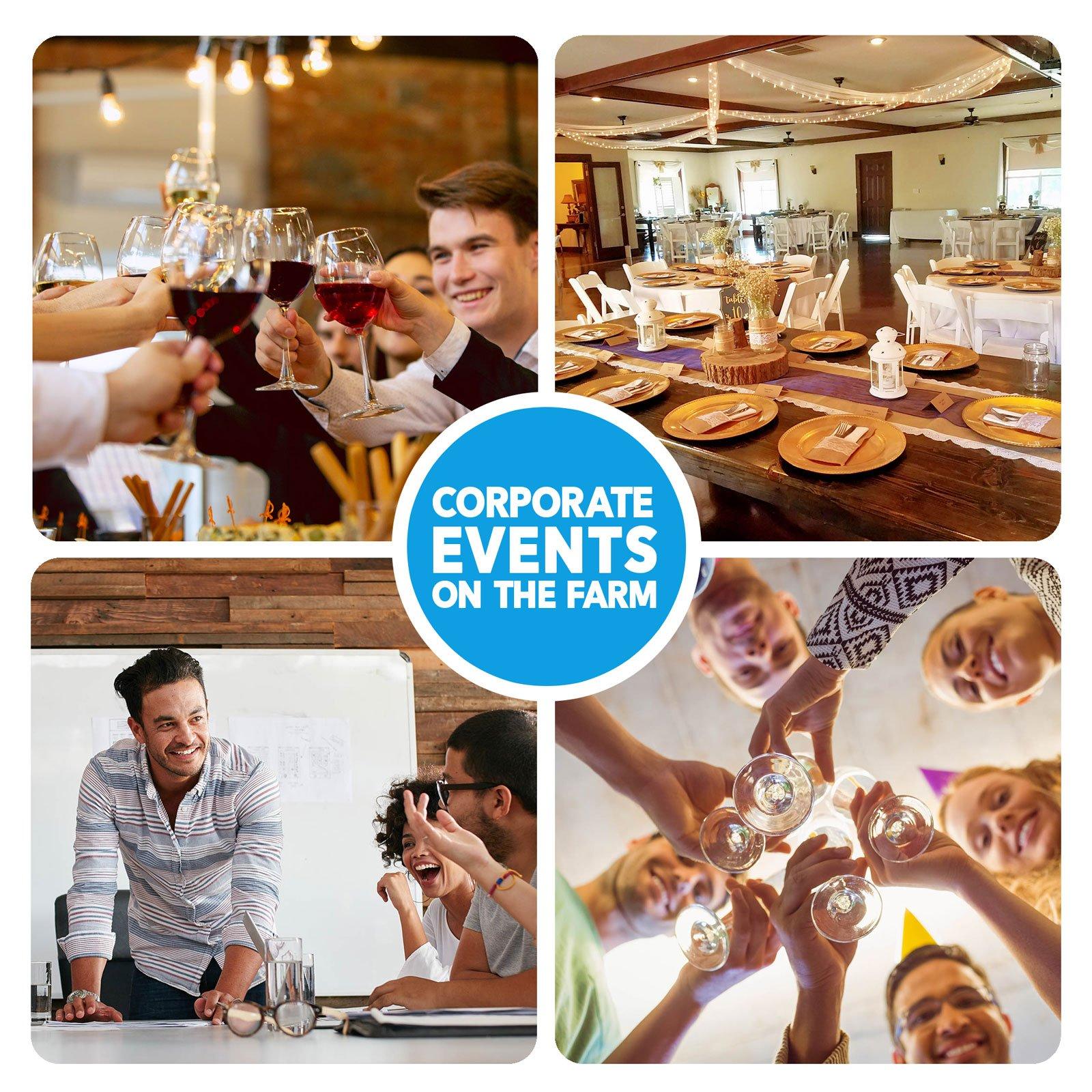 Corporate Events on Alegre Farm